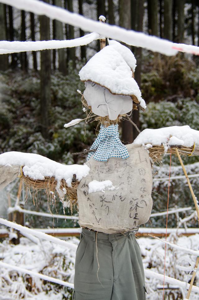 雪景色115