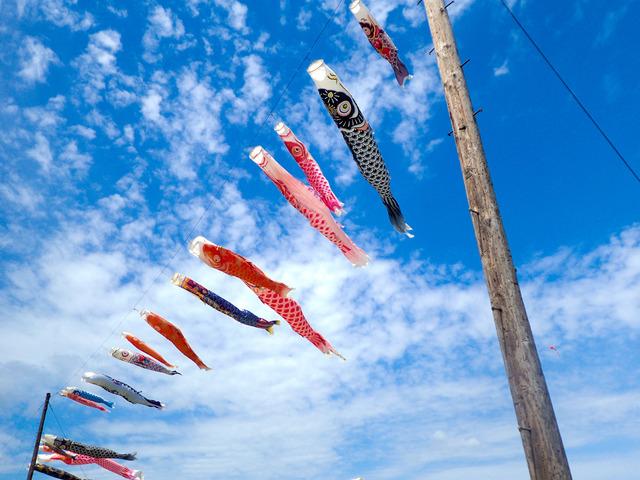 相模大凧祭り12