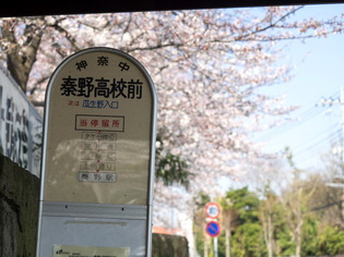 秦野街景23
