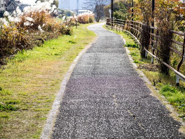 鈴川遊歩道1
