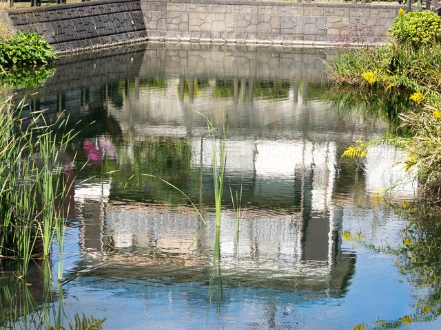 1018今泉名水桜公園2