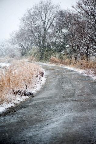 雪景色53
