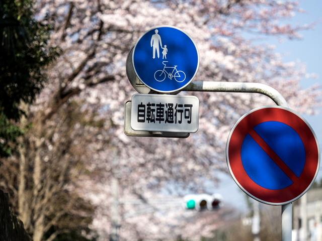 秦野街景24