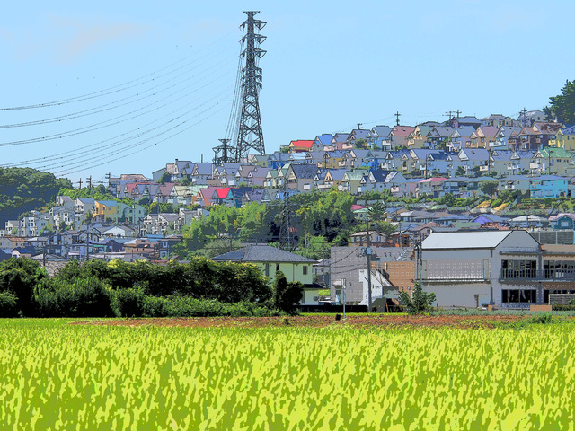 秦野街景2