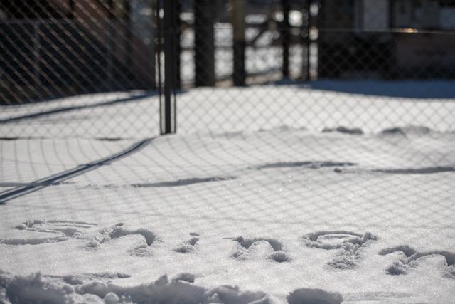 雪景色133