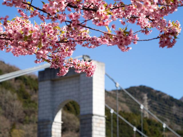 秦野戸川公園8