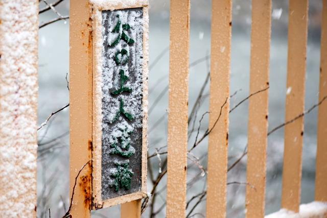 雪景色62