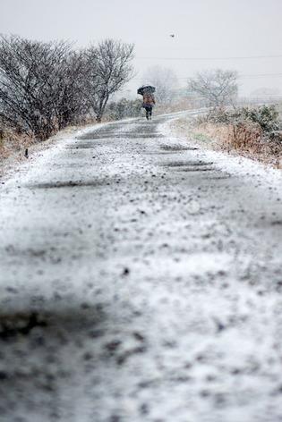 雪景色55