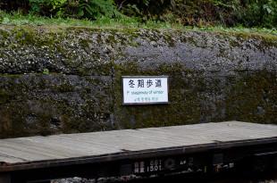 黒部峡谷鉄道37