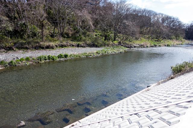 金目川橋梁3