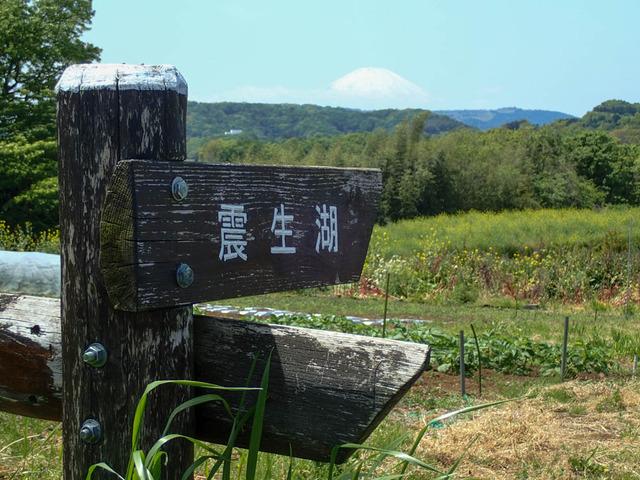 秦野里山5