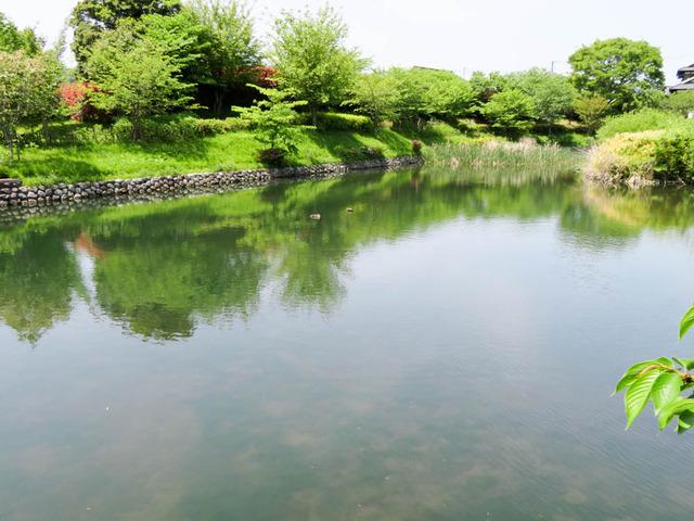 秦野里山10