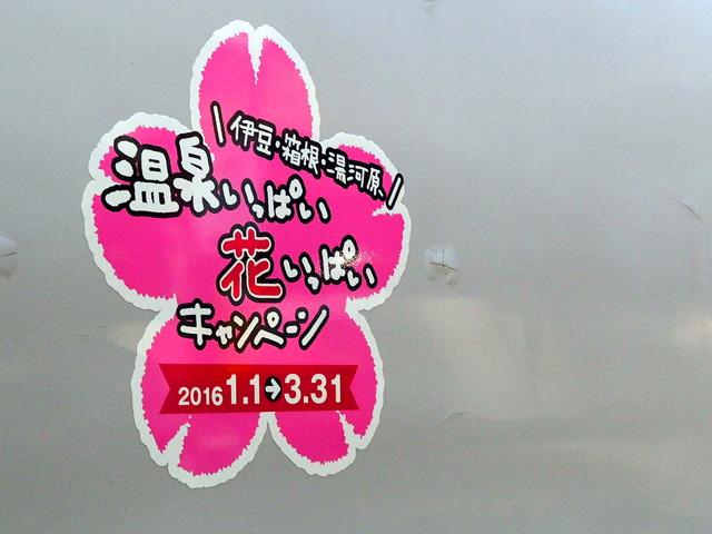 SuperView踊り子号3