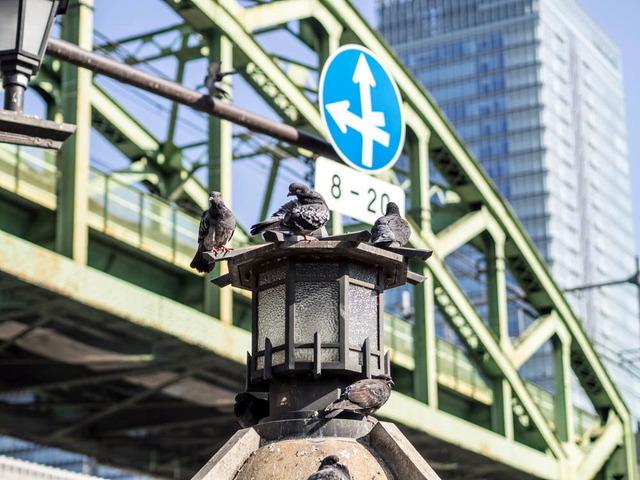 東京街景15