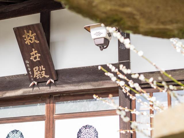 寿徳寺11