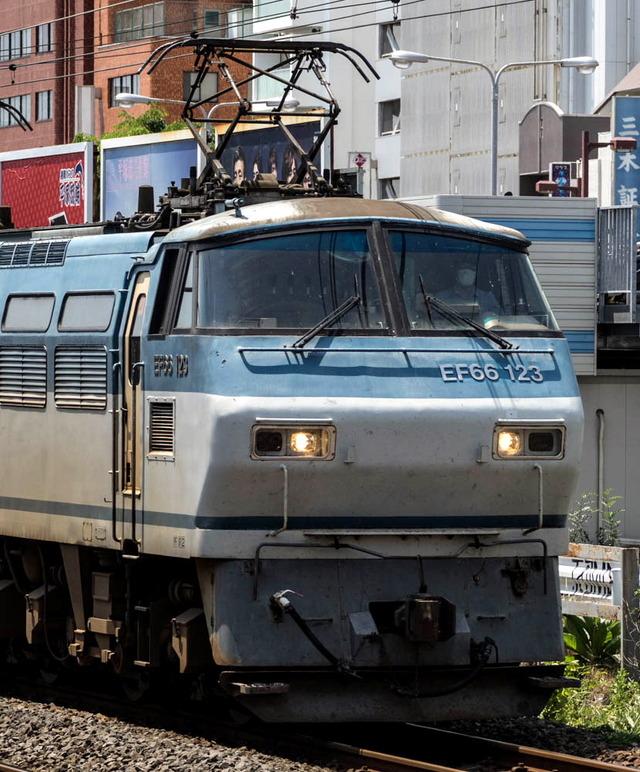 EF66 123電気機関車01