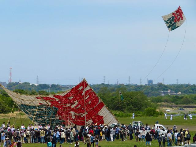 相模大凧祭り26