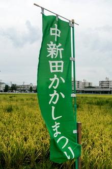 kakaishi1