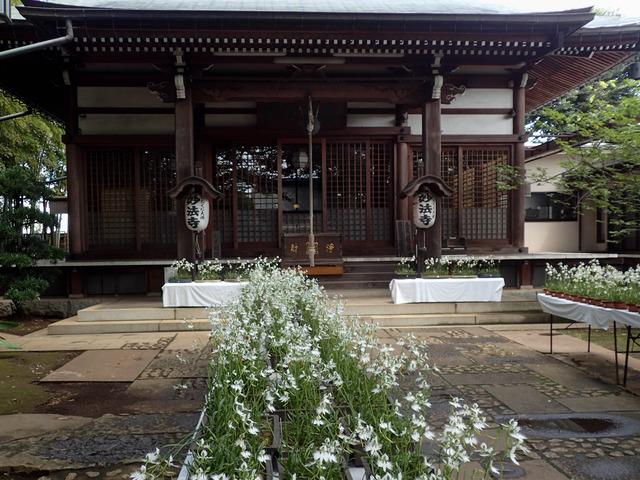 妙法寺10