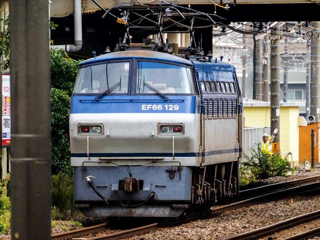 EF66 129貨物03