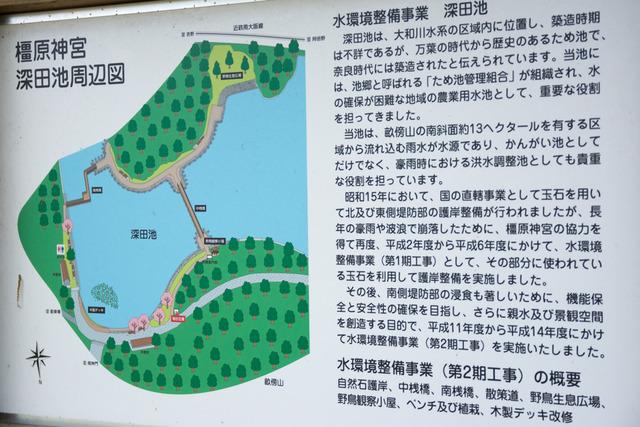 橿原神宮7