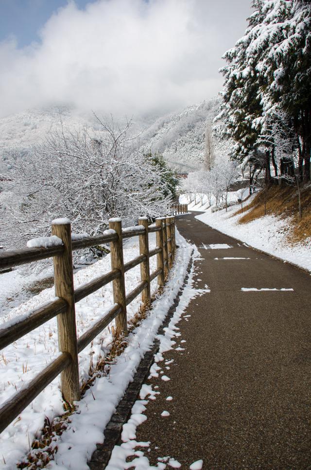 雪景色88