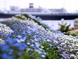 横浜街景12