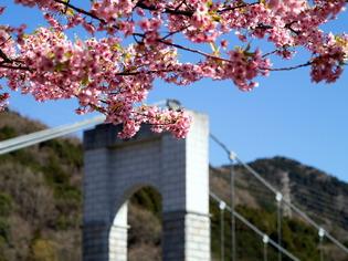 秦野戸川公園4