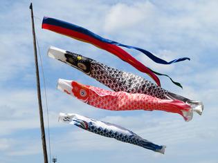 相模大凧祭り8