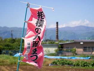 相模大凧3