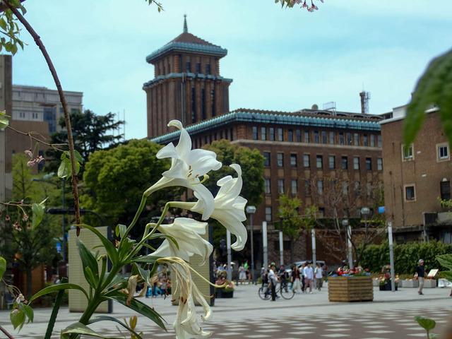 横浜街景1
