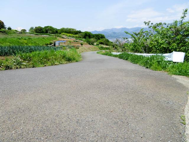 秦野里山3