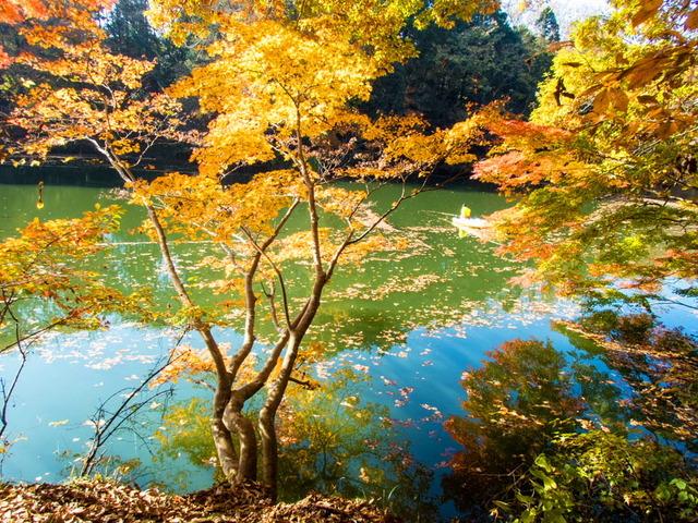 震生湖08