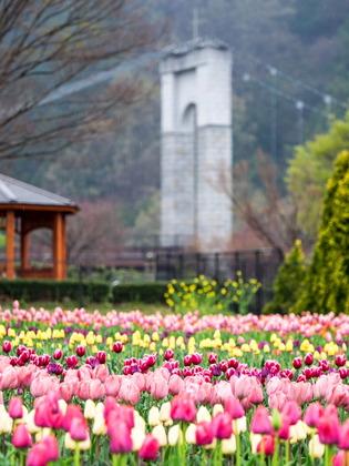 戸川公園5
