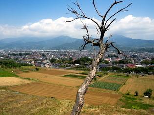 渋沢丘陵1