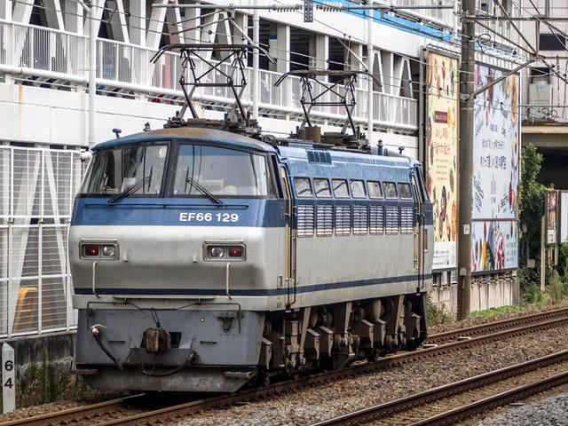 EF66 129貨物02