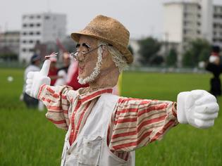案山子祭05