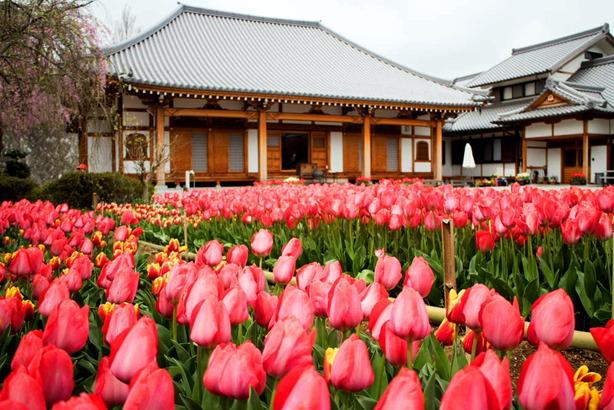 泉蔵寺05