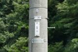 福井若狭の電柱