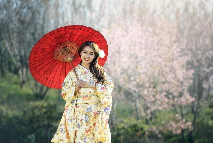 geisha-1822467_960_720