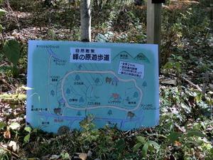 峰の高原遊歩道
