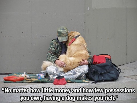 dog_quotes_01