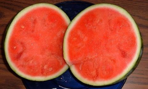 Watermelon_seedless