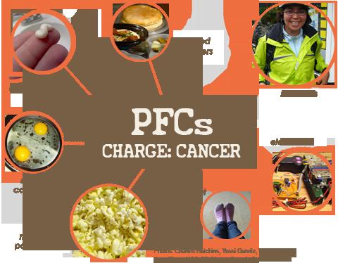 pfcs-infographic