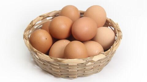 chicken-1686641_1280