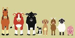 farm-animals-animated