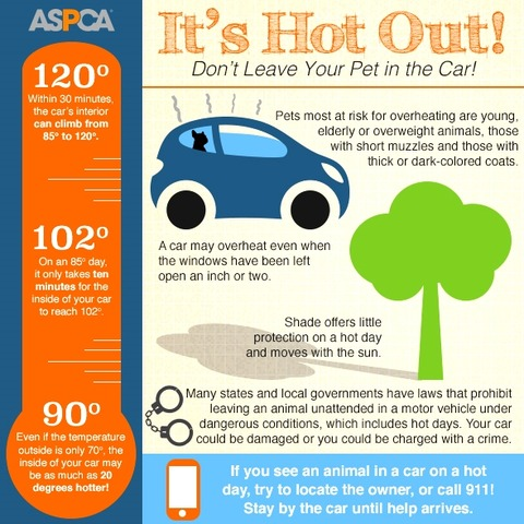hot-cars-infographic-061815
