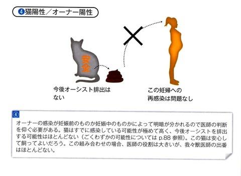 トキソプラズマと飼い主4