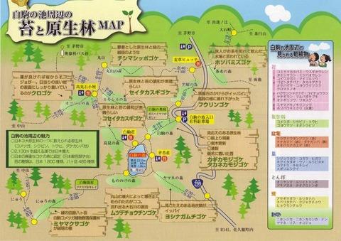 koke map
