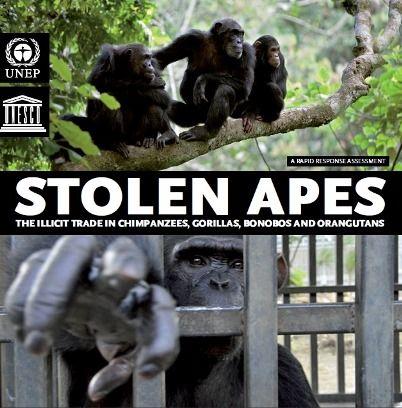 stolenapes